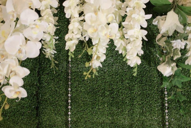 Красивый белый фон свадьбы с белым цветком стоковые фотографии rf