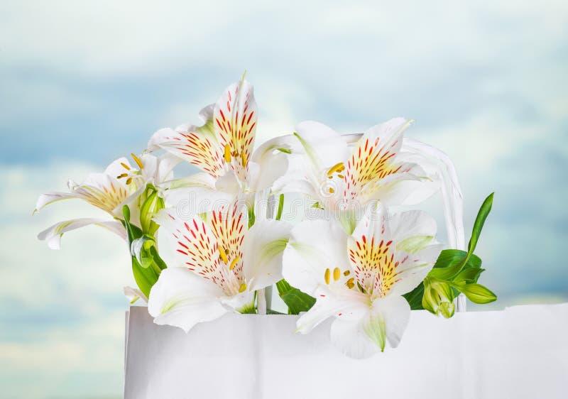 Красивый букет белых цветков на День матери стоковое фото rf