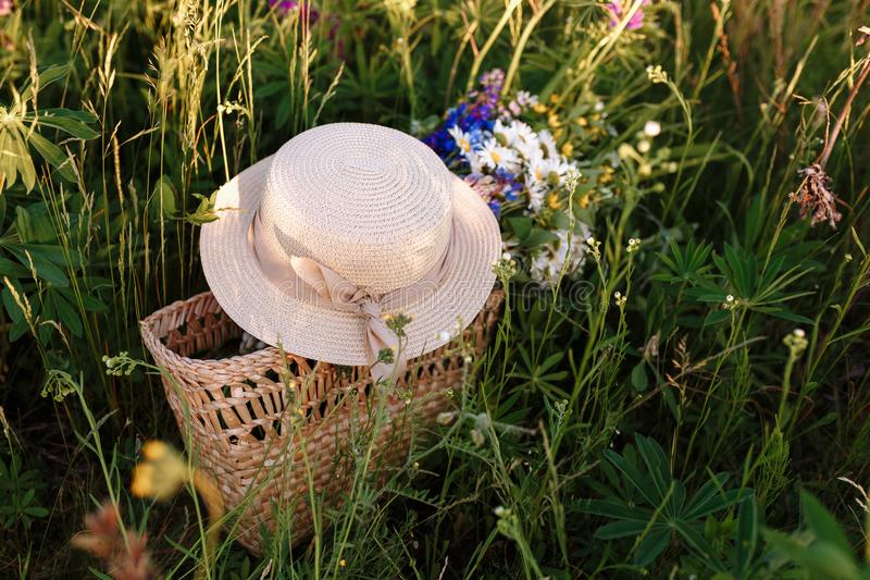 Красивый букет lupines лежит в сумке вместе с соломенной шляпой на траве в поле Горизонтальная съемка стоковые изображения rf