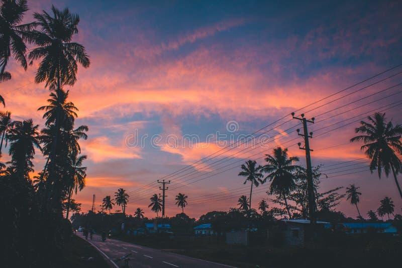 Красивый вечер с красочным небом стоковые фото