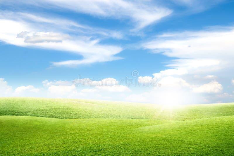 Красивый взгляд ландшафта поля луга зеленой травы естественного и маленького холма с белыми облаками и голубым небом стоковые изображения rf