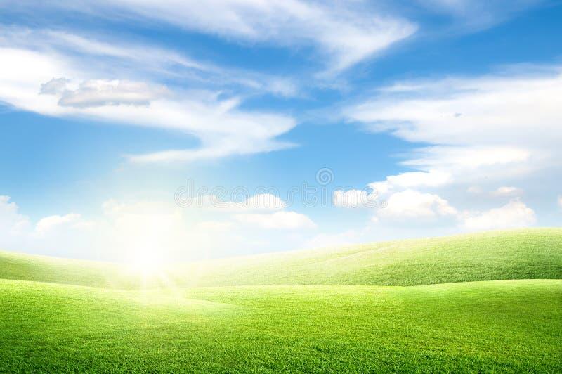 Красивый взгляд ландшафта поля луга зеленой травы естественного и маленького холма с белыми облаками и голубым небом стоковые изображения