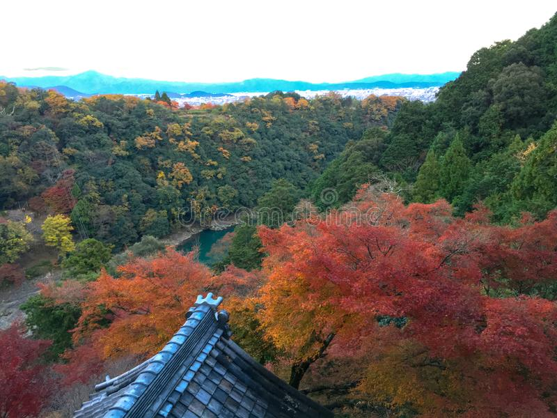 Красивый взгляд панорамы зеленых и красных деревьев осени от небольшого виска на горе в зоне arashiyama стоковые изображения rf