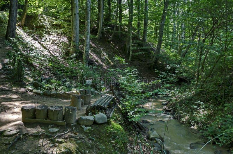 Красивый вид балканской горы с лесом, река Vrerestitsa и место для ослабляют под пиком dolkie Todorini стоковое фото
