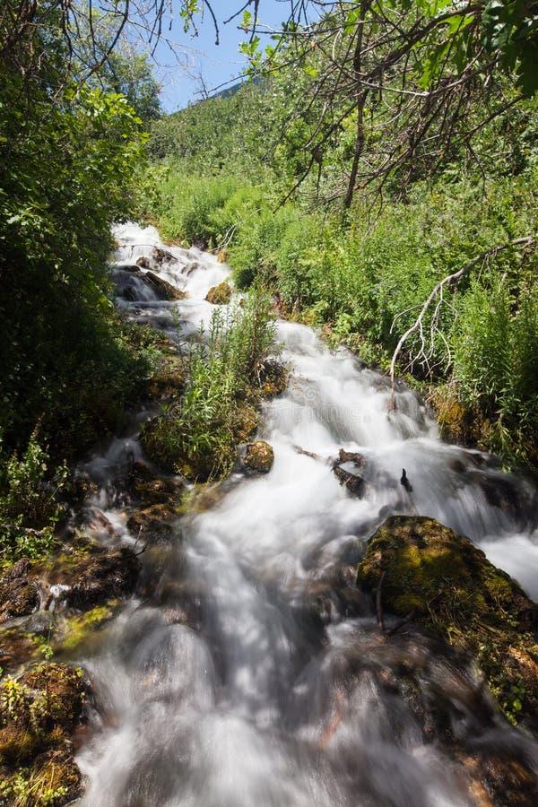 Красивый вид воды понижаясь на каскад скачет национальный парк стоковое изображение rf