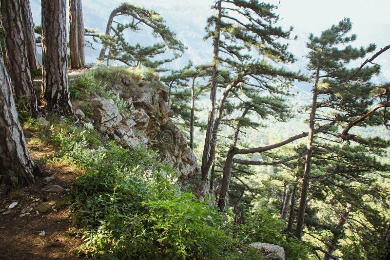 Красивый вид горы AI-Petri горы и море Крыма Гора и ландшафт моря стоковое фото