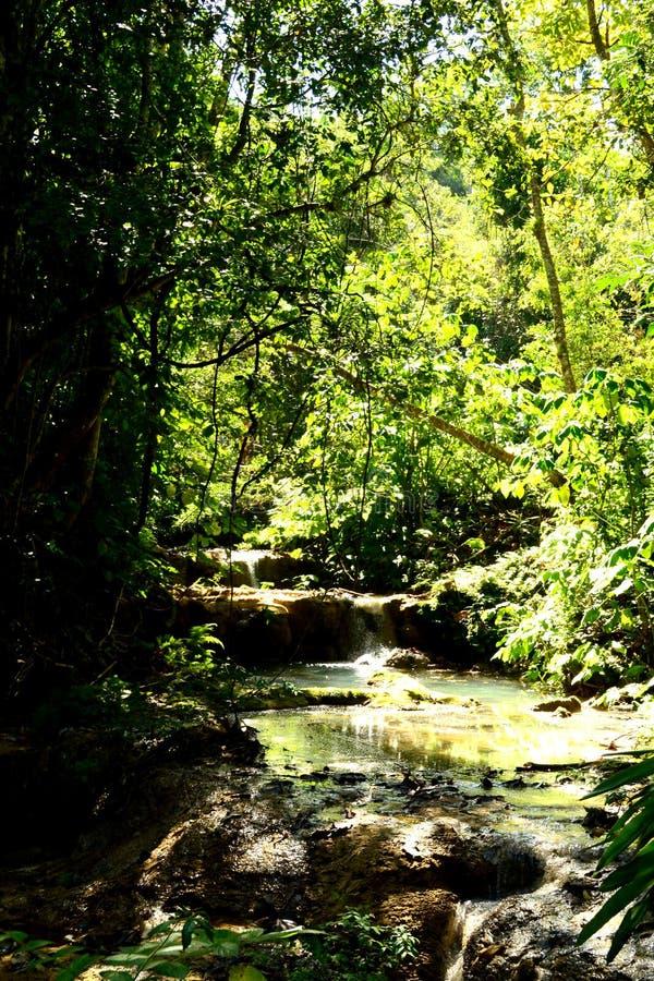 Красивый вид долины El Nicho Cienfuegos, Куба стоковое изображение rf