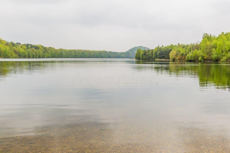Красивый вид озера с много деревьев и серого небом стоковые изображения rf