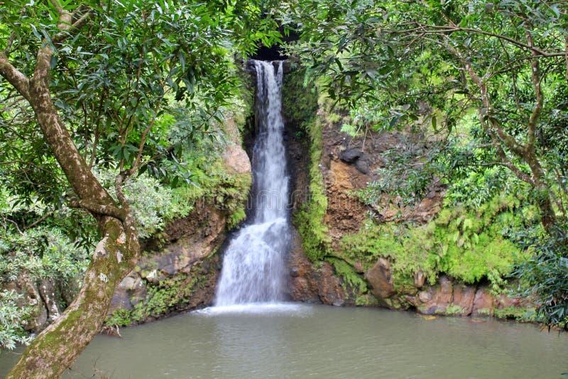 Красивый вид падений Александры, Маврикий стоковое фото
