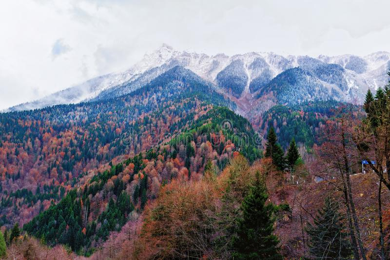 Красивый вид холмов покрытых с красочными деревьями осени стоковое фото