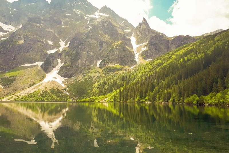 """Красивый вид """"озера Morskie Oko """"в польских горах в Tatras Зеленые деревья отражены от su воды стоковые изображения rf"""