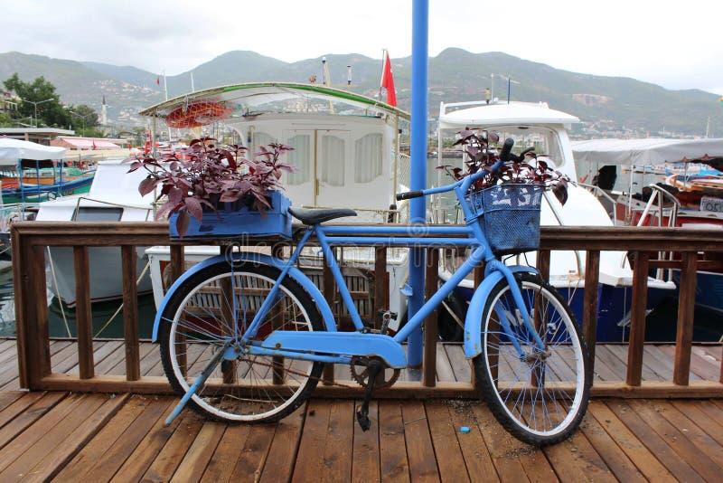 Красивый винтажный голубой велосипед украшенный с корзинами стоек цветков на пристани на фоне моря стоковые фотографии rf