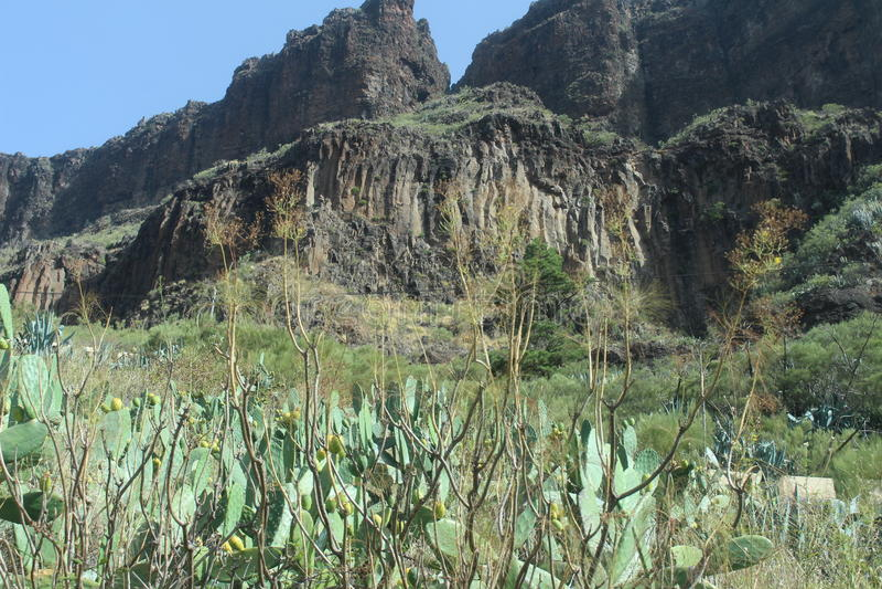Красивый вид гор в деревне пирата, Masca, Тенерифе, Испании стоковые фотографии rf
