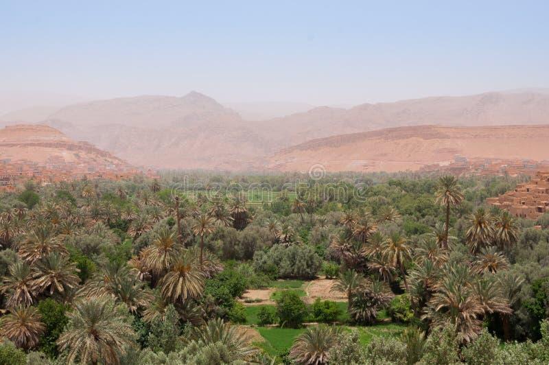 Красивый вид над оазисом Tinghir в Марокко стоковое фото