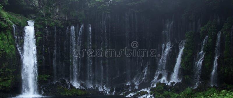 Красивый водопад в горе тропического леса стоковые фотографии rf