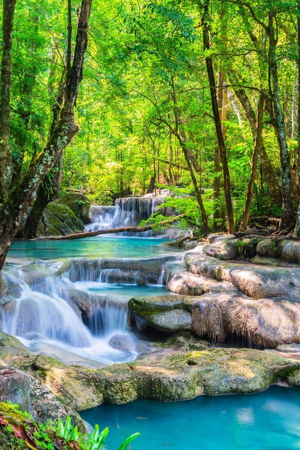 Красивый водопад в национальном парке стоковая фотография rf