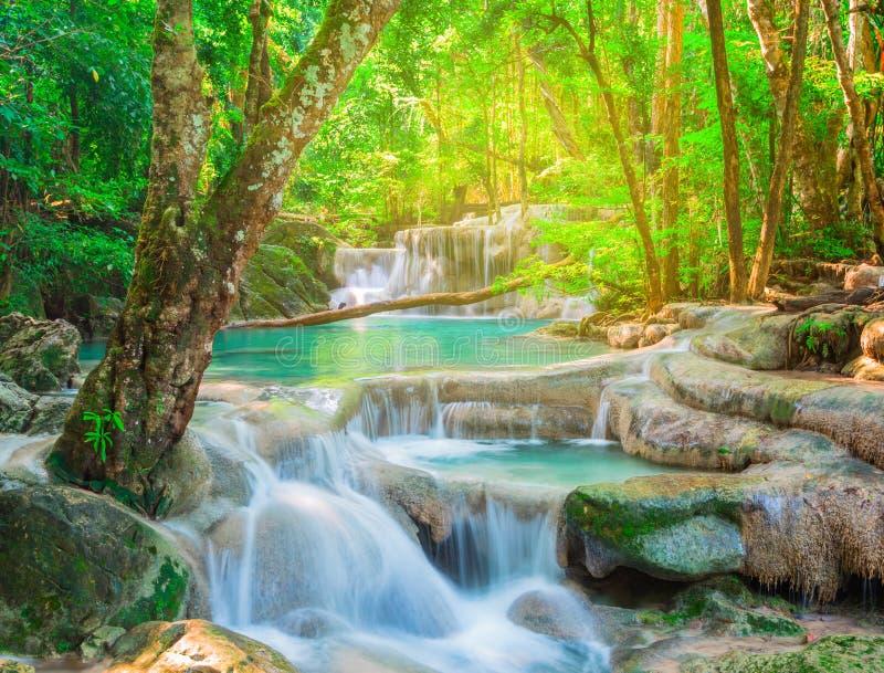 Красивый водопад в тропическом лесе стоковое изображение rf