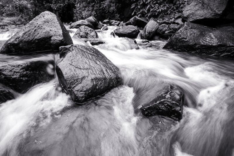 Красивый водопад в тропическом лесе стоковая фотография