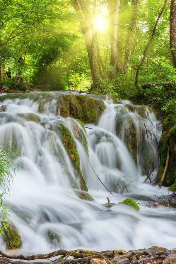 Красивый водопад на озерах национальном парке Plitvice лета, Хорватии стоковое изображение rf
