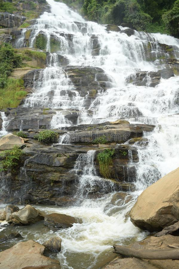 Красивый водопад с камнями в лесе стоковое фото