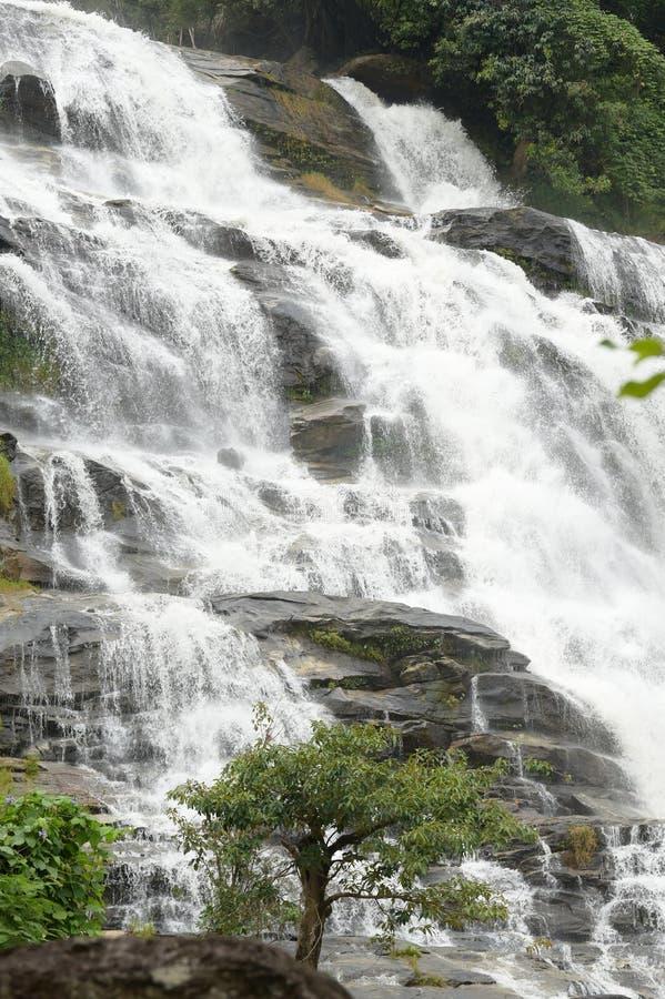 Красивый водопад с камнями в лесе стоковые изображения rf