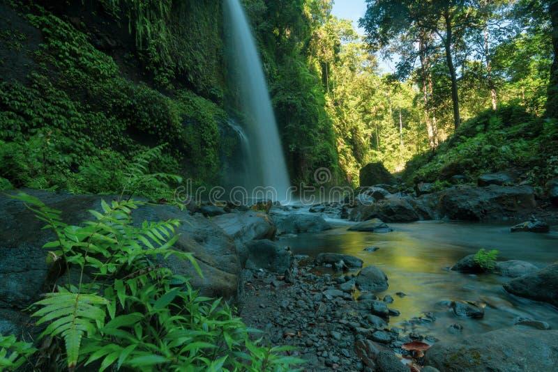 Красивый водопад kelep tiu в медленной шторке стоковые изображения rf