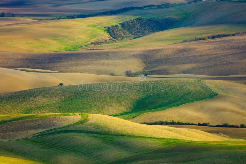 Красивый воздушный ландшафт холмов волн в сельской природе стоковые фотографии rf