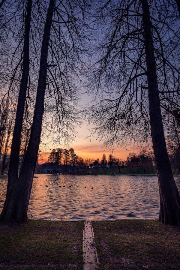 Красивый восход солнца на холодный зимний день на озере стоковое изображение