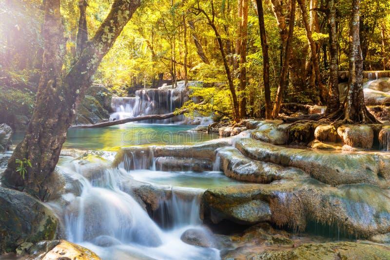 Красивый водопад в глубоком лесе стоковое фото