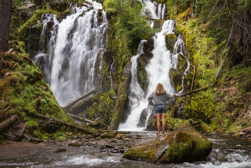 Красивый водопад в Орегоне стоковые фото