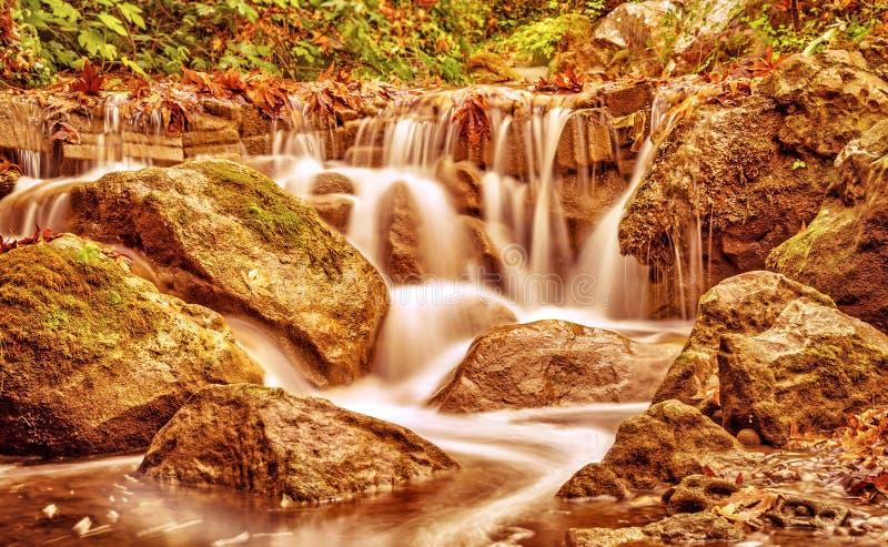 Красивый водопад в парке осени стоковые фотографии rf