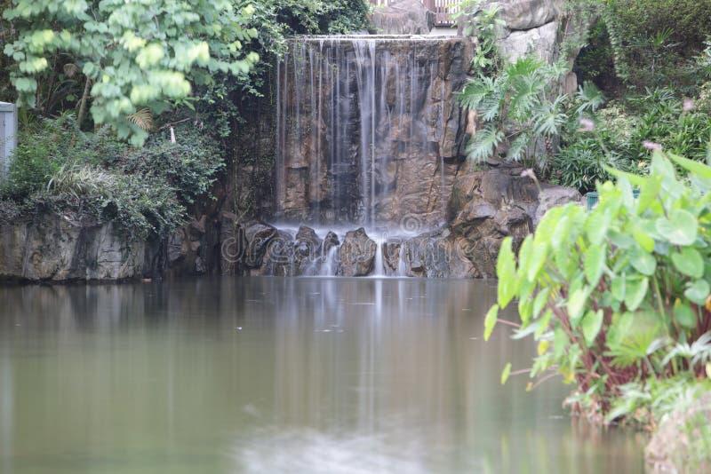 Красивый водопад в парке стоковые фотографии rf