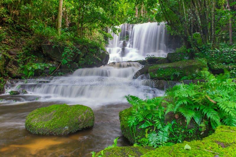 красивый водопад в тропическом лесе на phet горы berk ушата phu стоковая фотография rf