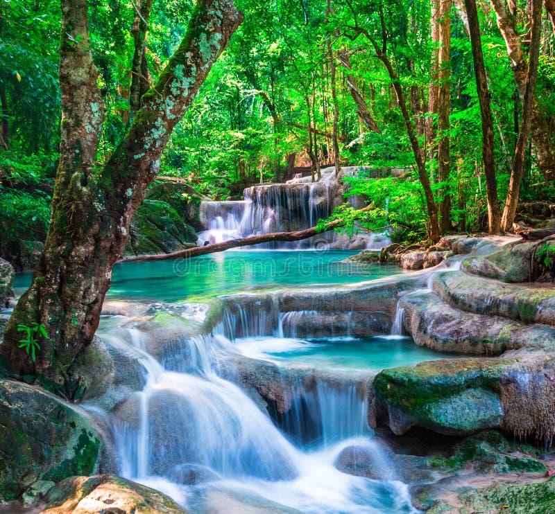 Красивый водопад в тропическом лесе стоковое фото rf