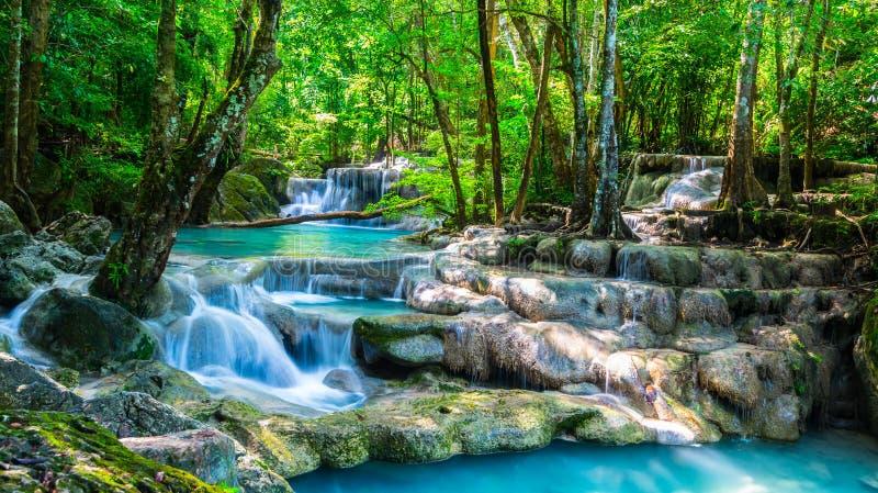 Красивый водопад в утреннем времени стоковые изображения