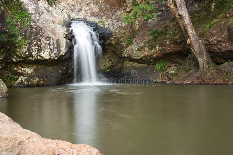 Красивый водопад Kondalilla стоковое фото rf