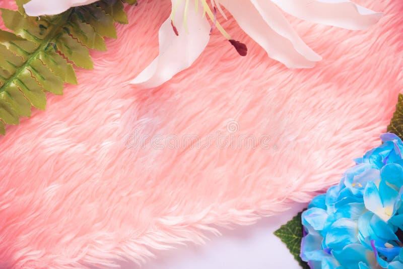 Красивый голубой цветок гортензии на розовой предпосылке белизны ткани стоковые фото
