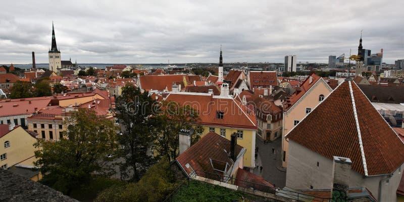 Красивый городок Таллина старый стоковые изображения rf
