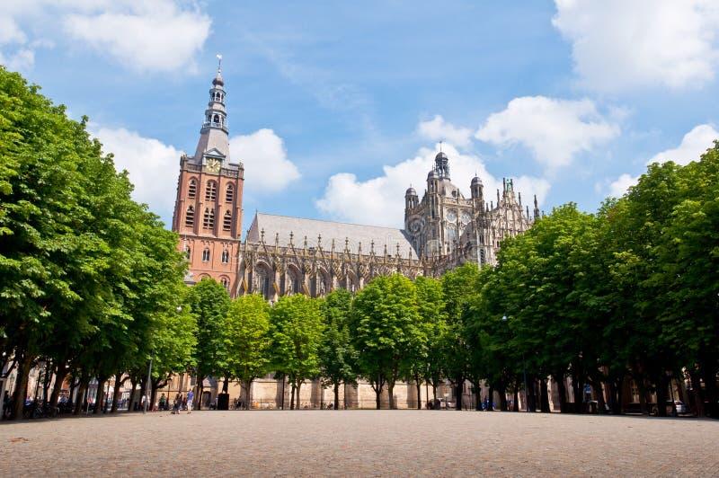 Красивый готский собор стиля в вертепе Bosch, Нидерландах стоковая фотография rf