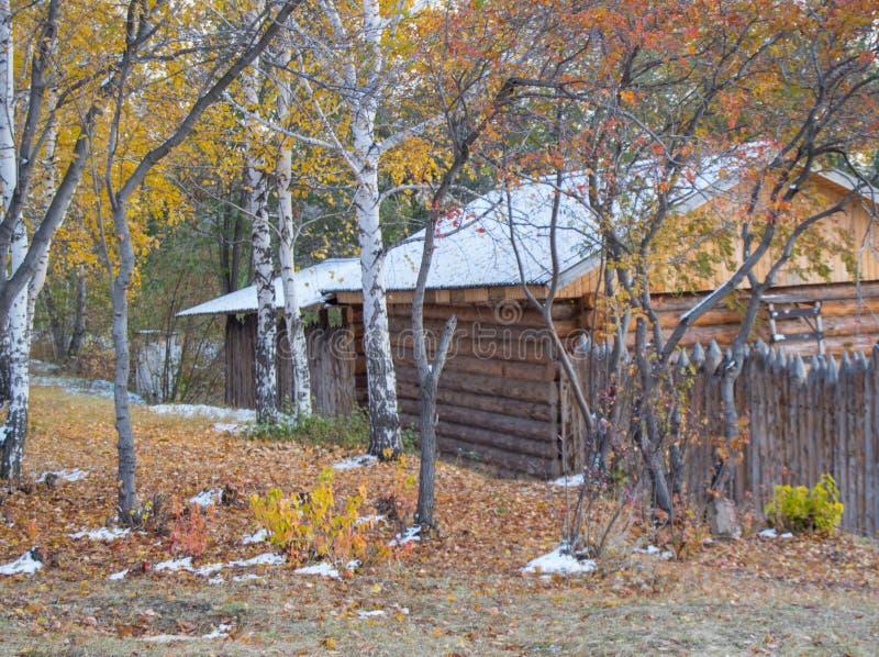 Красивый деревянный дом в древесинах осени, и первый снег стоковое фото