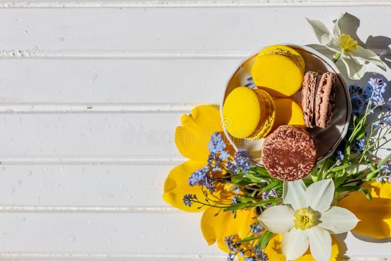 Красивый женственный состав, яркие цвета Французские помадки macaroon и нежные цветения цветков на белое деревянном стоковые фотографии rf