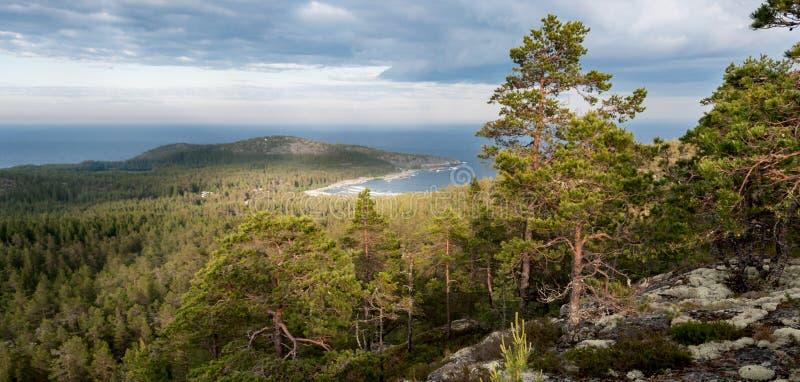 красивый залив в ландшафте горы с видом на море, Швеция стоковое изображение