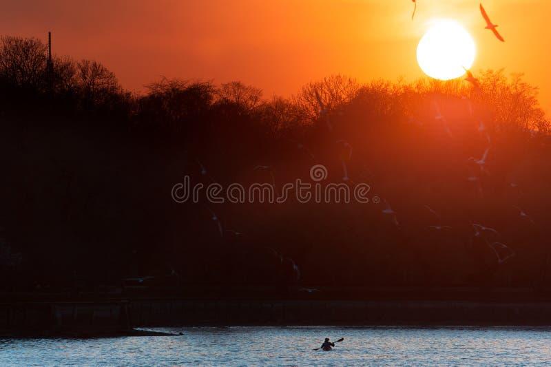 Красивый заход солнца над красочным озером, с человеком полоща на каяке Предпосылка лета с космосом экземпляра для дизайнов или стоковое фото