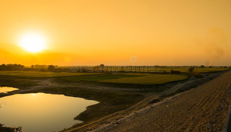 Красивый заход солнца на зеленых пшеничных полях и небольшом озере стоковое фото rf