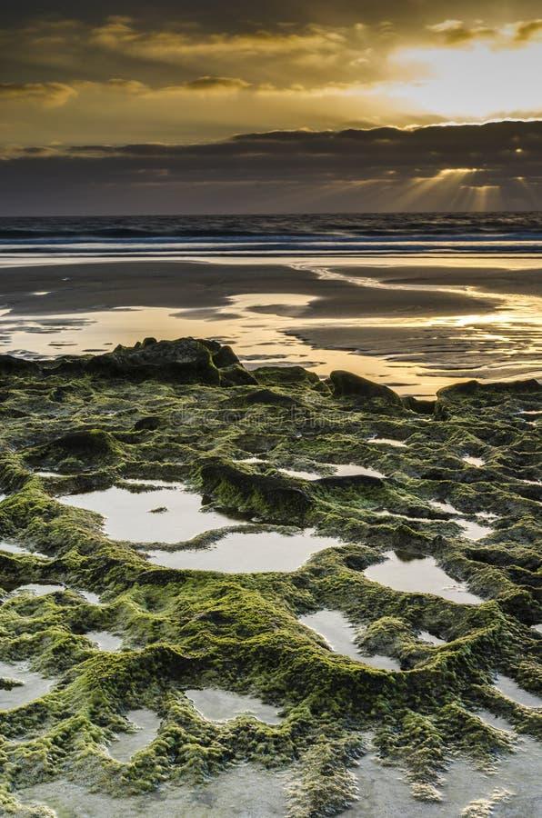 Красивый заход солнца в зеленом скалистом пляже, El Cotillo, Фуэртевентуре стоковое фото rf