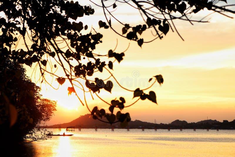 Красивый заход солнца в озере songkhla стоковые фотографии rf