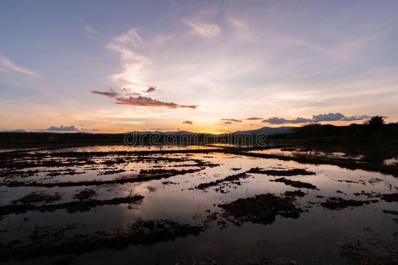 Красивый заход солнца отразил в воде в ниве стоковые фотографии rf