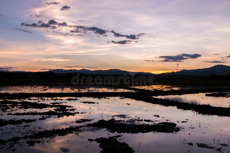 Красивый заход солнца отразил в воде в ниве стоковое изображение