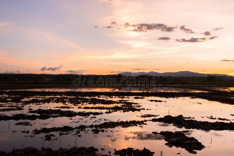Красивый заход солнца отразил в воде в ниве стоковые фото