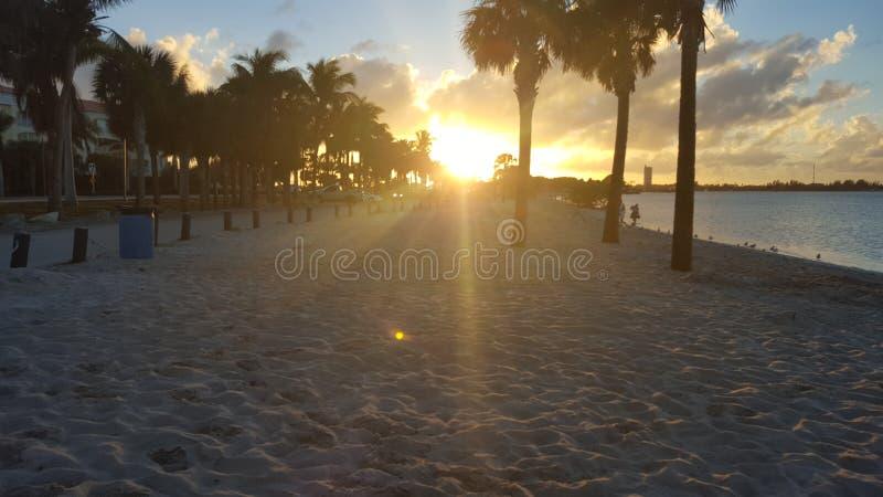 Красивый заход солнца St. Lucie порта в Флориде стоковое изображение rf